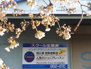 DSCF4812-300.jpg