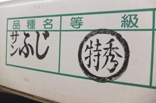 DSCF8805-300.jpg