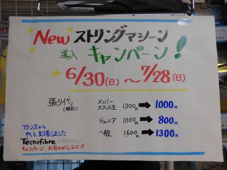 DSCN1038-450.JPG