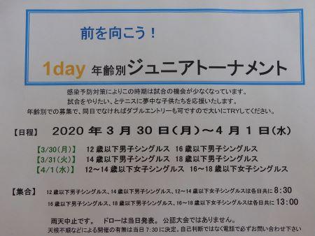DSCN2960.JPG-450.JPG