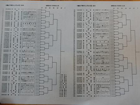 DSCN9479-450.jpg