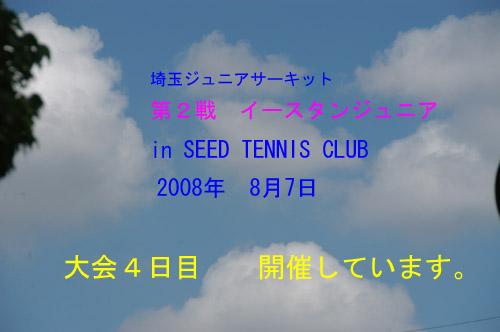 DSC_0006-500.jpg