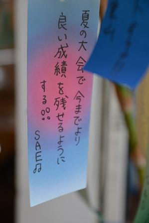 DSC_0111-450.jpg