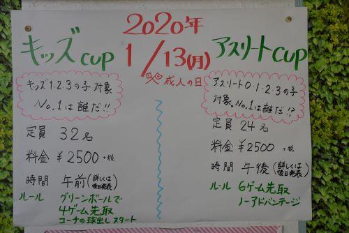 DSC_2702-500.JPG